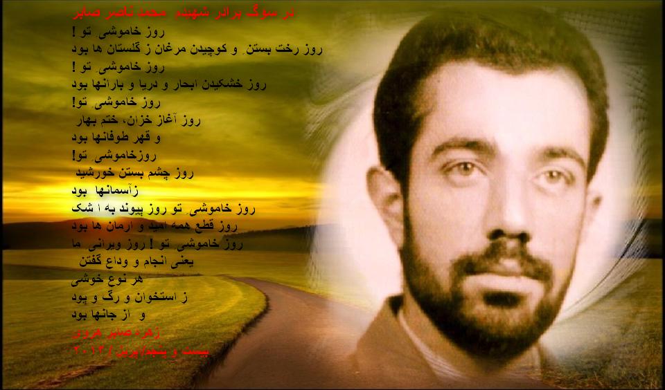 ناصر صابر هروی