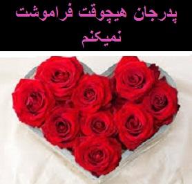 قلب 4