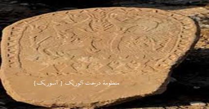 زبان فارسی 5